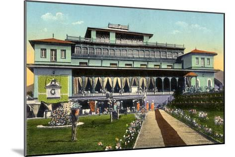 Shri Pratap Singh Museum, Srinagar, Kashmir, India, Early 20th Century--Mounted Giclee Print