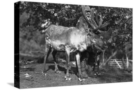 Local Man with a Reindeer, Lyngen, Northern Norway, C1920S-C1930S--Stretched Canvas Print