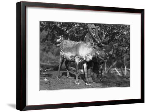 Local Man with a Reindeer, Lyngen, Northern Norway, C1920S-C1930S--Framed Art Print