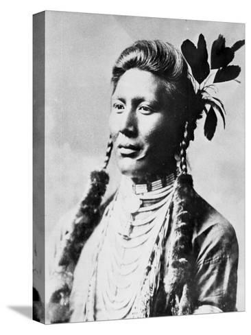Yellow Dog, North American Indian, C1885-90--Stretched Canvas Print
