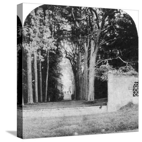 The Avenue, Guy's Cliff, Warwick, Early 20th Century--Stretched Canvas Print