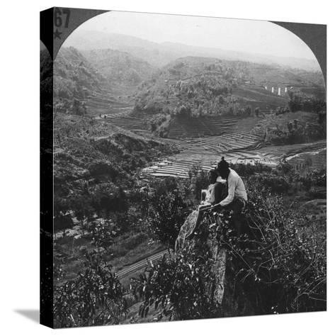 Java, Indonesia, C1900s--Stretched Canvas Print
