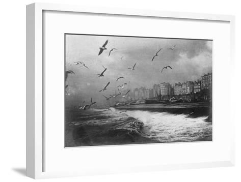 Gulls at Brighton, East Sussex, Early 20th Century--Framed Art Print