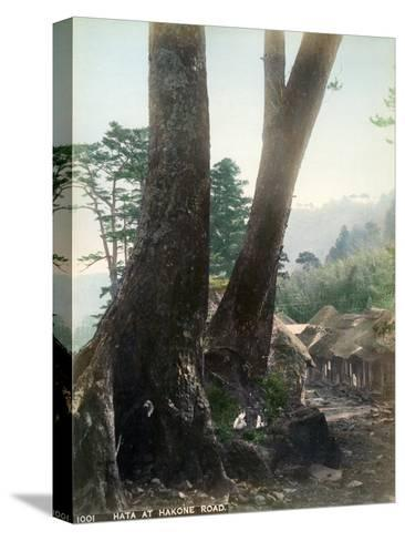 Hata at Hakone Road, Japan, Early 20th Century--Stretched Canvas Print
