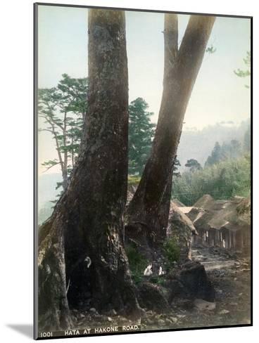 Hata at Hakone Road, Japan, Early 20th Century--Mounted Giclee Print