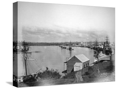 Brisbane River, South-East Queensland, Australia, 1870-1880--Stretched Canvas Print