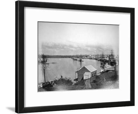 Brisbane River, South-East Queensland, Australia, 1870-1880--Framed Art Print