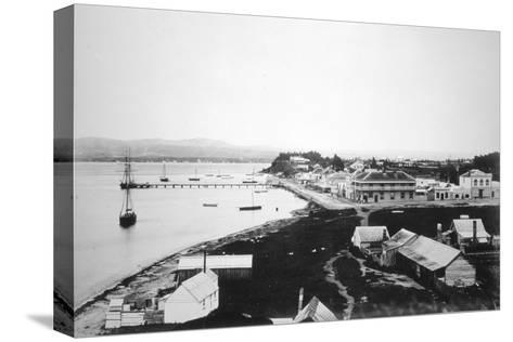 Tauranga, Bay of Plenty, North Island, New Zealand, 1875--Stretched Canvas Print