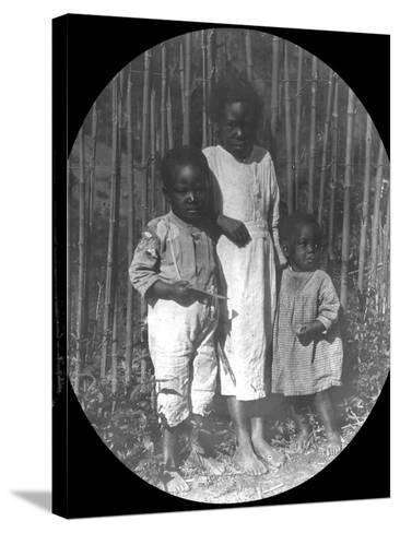Children Near Petrópolis, Brazil, Late 19th or Early 20th Century--Stretched Canvas Print