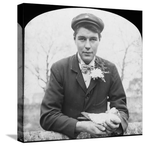 E Hack Holding a Pigeon, Late 19th or Early 20th Century--Stretched Canvas Print
