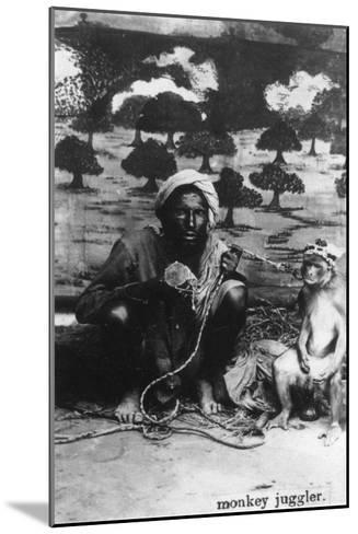 Monkey Juggler, India, 20th Century--Mounted Giclee Print