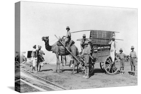 A Camel Cart, India, 1916-1917--Stretched Canvas Print