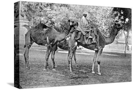 Campbellpore, Pakistan, 20th Century--Stretched Canvas Print