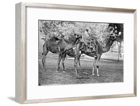 Campbellpore, Pakistan, 20th Century--Framed Art Print