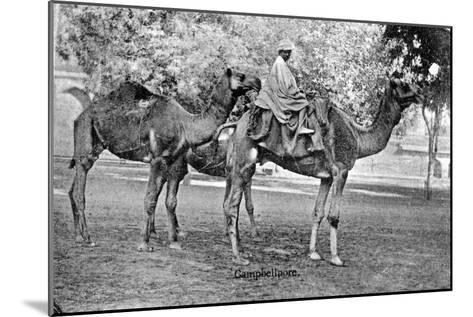 Campbellpore, Pakistan, 20th Century--Mounted Giclee Print