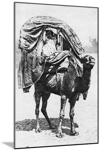 A Girl on a Camel Litter, Algeria, 1922- Crete-Mounted Giclee Print