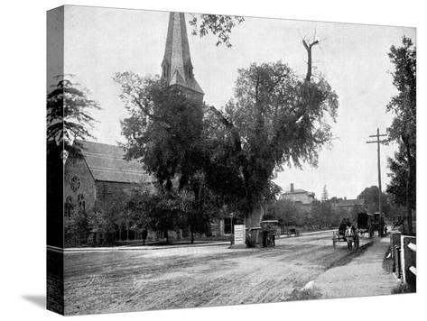 Washington Elm and Memorial Stone, Cambridge, Massachusetts, USA, 1893-John L Stoddard-Stretched Canvas Print