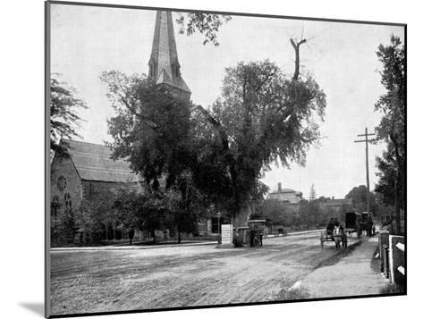 Washington Elm and Memorial Stone, Cambridge, Massachusetts, USA, 1893-John L Stoddard-Mounted Giclee Print