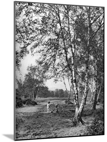 Putney Heath, London, 1926-1927-McLeish-Mounted Giclee Print