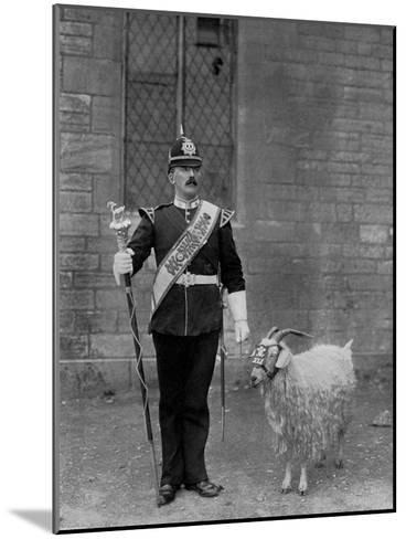 The Drum Major and Goat of the 1st Battalion the Welch Regiment, 1896-WM Crockett-Mounted Giclee Print