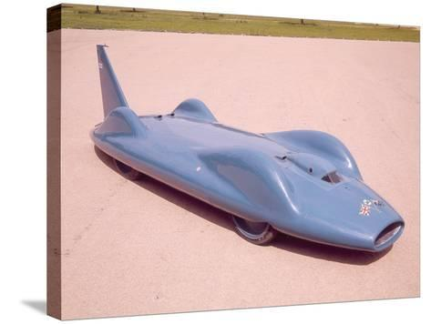The 1961 Bluebird--Stretched Canvas Print