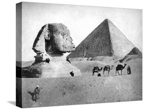 The Sphinx and Pyramid at Giza, Egypt, C1882--Stretched Canvas Print