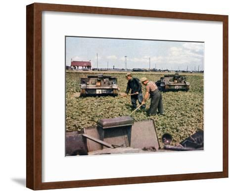 Abandoned French Tanks in a Field, Dunkirk, France, 1940--Framed Art Print