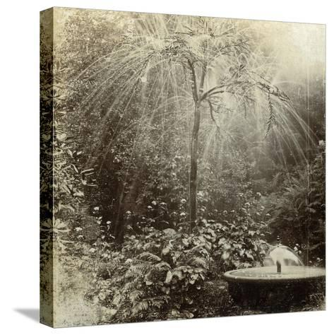 Willow Tree Fountain, Chatsworth, Derbyshire--Stretched Canvas Print