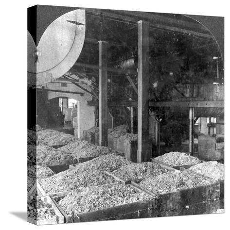 Making Paper from Rags, Holyoke, Massachusetts, USA, 20th Century--Stretched Canvas Print