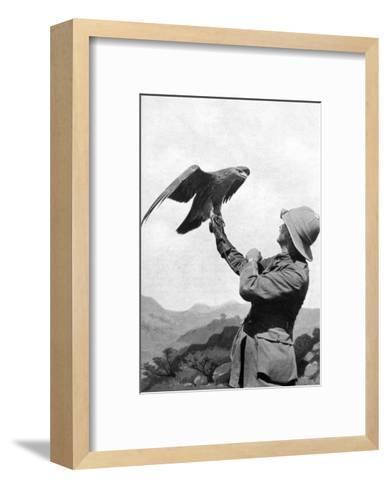 A British Officer with a Tamed Golden Eagle, Salonika, Greece, First World War, 1914-1918--Framed Art Print