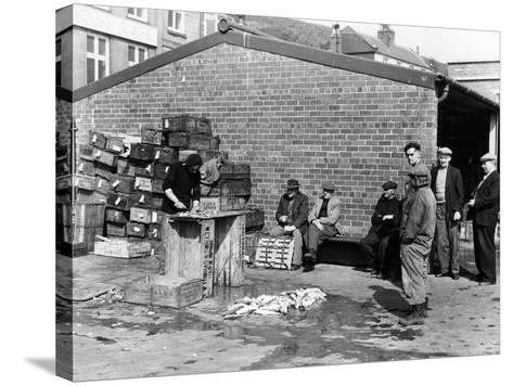 Gutting Fish Outside a Warehouse in Whitby, North Yorkshire, 1959--Stretched Canvas Print