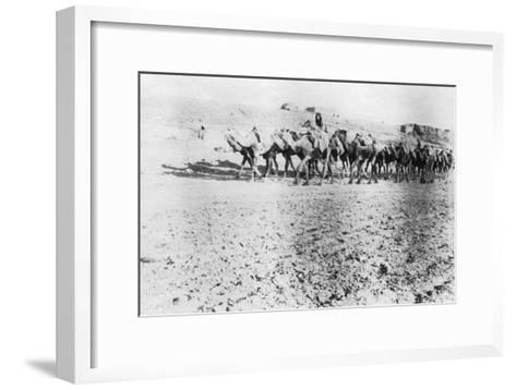 Camel Train, Mosul, Mesopotamia, 1918--Framed Art Print