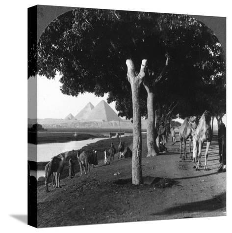 The Road to the Pyramids, Giza, Egypt, 1905-Underwood & Underwood-Stretched Canvas Print