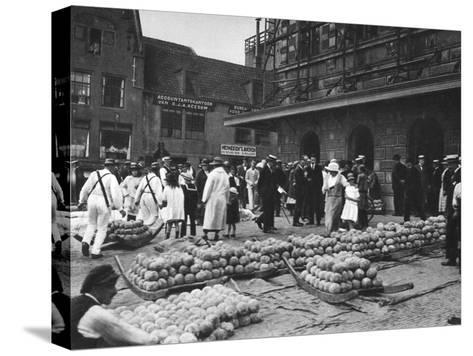 The Cheese Market on Friday, Alkmaar, Netherlands, C1934--Stretched Canvas Print