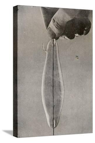 The First Incandescent Electric Lamp, C1916--Stretched Canvas Print