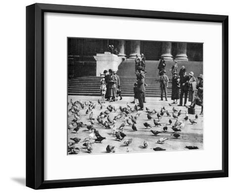 Pigeons in Trafalgar Square, London, 1926-1927--Framed Art Print