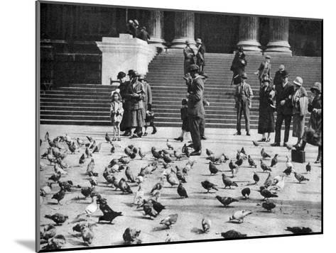 Pigeons in Trafalgar Square, London, 1926-1927--Mounted Giclee Print