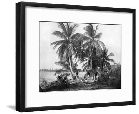 On the Road to Blue Hole, Port Antonio, Jamaica, C1905-Adolphe & Son Duperly-Framed Art Print