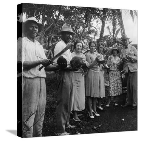 Tourists During a Halt by the Wayside, St Vincent, 1931--Stretched Canvas Print