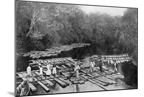 Rafts on the Tebicuary-Mi River, Paraguay, 1911--Mounted Giclee Print