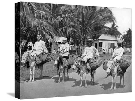 On the Way Home from Market, Jamaica, C1905-Adolphe & Son Duperly-Stretched Canvas Print