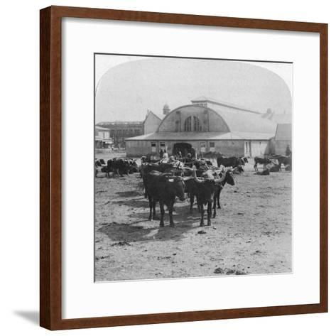 Building in Which Prisoners of War Were Tried, Pretoria, South Africa, Boer War, 1901-Underwood & Underwood-Framed Art Print
