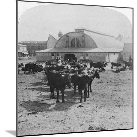 Building in Which Prisoners of War Were Tried, Pretoria, South Africa, Boer War, 1901-Underwood & Underwood-Mounted Giclee Print