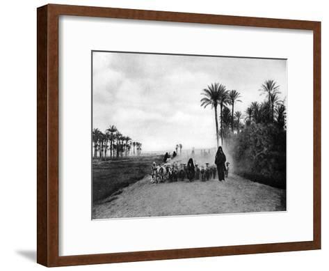 Shepherding Sheep Near Cairo, Egypt, C1920S--Framed Art Print