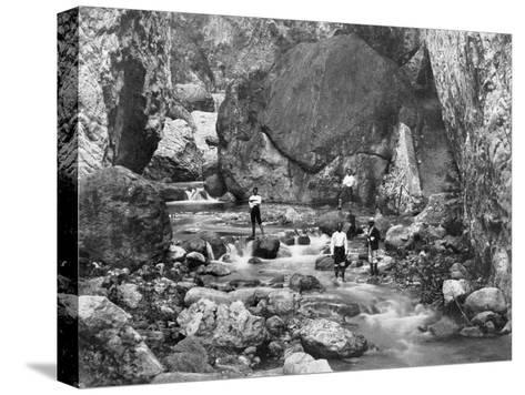 Cane River, Jamaica, C1905-Adolphe & Son Duperly-Stretched Canvas Print
