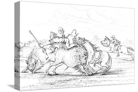 Buffalo Attacking a Cowboy on a Horse, 1841-Myers and Co-Stretched Canvas Print