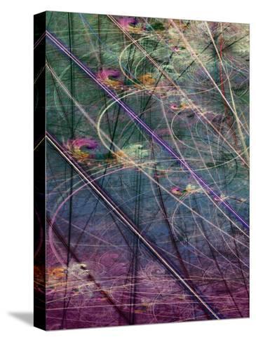 Wetlands Vector I-James Burghardt-Stretched Canvas Print