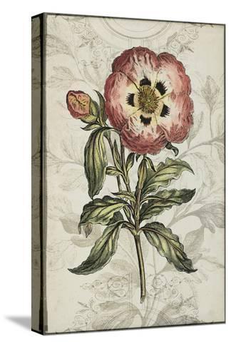 Keepsake Floral II-Jennifer Goldberger-Stretched Canvas Print