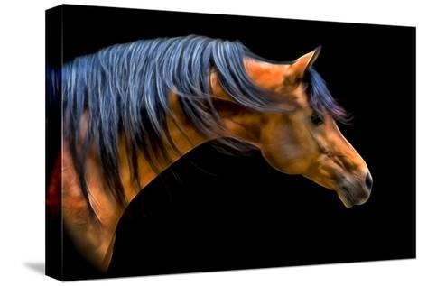 Wind Swept-PH Burchett-Stretched Canvas Print