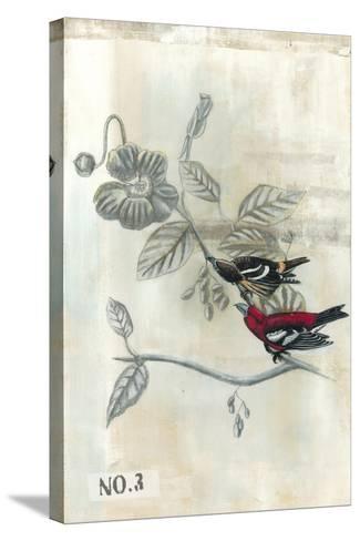 After Flight III-Naomi McCavitt-Stretched Canvas Print
